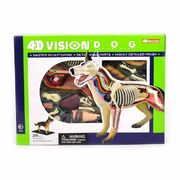 4D Vision Anatomy model Dog Koira